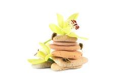 Pyramide, orchidées et escargots en pierre Photographie stock libre de droits