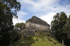 Pyramide teilweise überwältigt im Mayakomplex Dzibanche in Mexiko lizenzfreie stockbilder