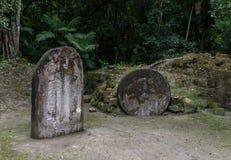 Pyramiden och templet i Tikal parkerar Sightobjekt i Guatemala med Mayan tempel och ceremoniel fördärvar Tikal är ett forntida royaltyfria bilder