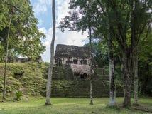 Pyramiden och templet i Tikal parkerar Sightobjekt i Guatemala med Mayan tempel och ceremoniel fördärvar Tikal är ett forntida arkivfoton