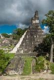 Pyramiden och templet i Tikal parkerar Sightobjekt i Guatemala med Mayan tempel och ceremoniel fördärvar Tikal är ett forntida royaltyfria foton