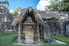 Pyramiden och templet i Tikal parkerar Sightobjekt i Guatemala med Mayan tempel och ceremoniel fördärvar Tikal är ett forntida arkivbilder