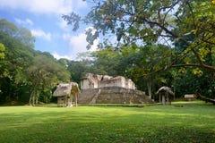 Pyramiden und Stella im archäologischen Park Cebal in Guatemal Lizenzfreies Stockfoto