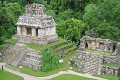 Pyramider av palenque chiapas royaltyfri fotografi