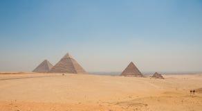 Pyramides de Gizeh, du Caire, de l'Egypte et de chameaux dans le premier plan Photo stock