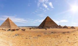 Pyramides de Gizeh et le camp des bédouins et des chameaux, Egypte photo libre de droits