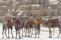 Pyramides de Gizeh Giza Photographie stock libre de droits