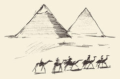Pyramids Cairo Egypt with Caravan Camels Vintage Royalty Free Stock Images