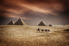 Pyramids of Egypt. Image of the great pyramids of Giza, in Egypt Royalty Free Stock Photos