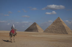The Pyramids, Egypt. This picture shows a view of the Pyramids in Egypt. You can see two of them, against a blue sky. There's a nomad on a camel in the first Stock Photography