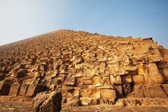 Pyramids. Egyrtian piramid and horses brie Royalty Free Stock Image