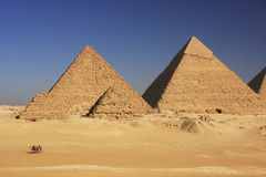 Pyramids of Giza, Cairo Stock Image