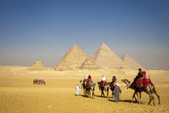 Pyramids Giza Plateau Cairo. The Pyramids at Giza, in Cairo. All nine pyramids can be seen from the vantage point where this photo was taken, and the camels are stock images