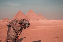 Pyramids landscape stock photo