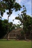 Pyramids Maya, National park Copan in Honduras, vacation trip Royalty Free Stock Image