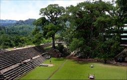 Pyramids Maya, National park Copan in Honduras, vacation trip Royalty Free Stock Photo