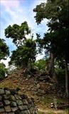 Pyramids Maya, National park Copan in Honduras, vacation trip Royalty Free Stock Images