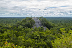 Pyramids Mexico calakmul forest trees. A Maya archaeological site in the Mexican state of Campeche, deep in the jungles of the greater Petén Basin region. It stock images