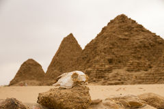 The pyramids at Nuri Royalty Free Stock Image