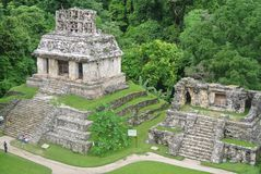 Pyramids of palenque chiapas royalty free stock photography
