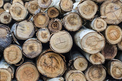 Pyre & woodpile Royalty Free Stock Image