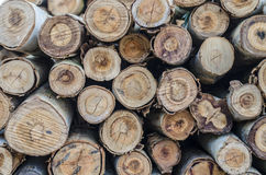 Pyre & woodpile Royalty Free Stock Photo