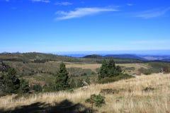 Pyrenean äng i Aude Arkivfoton