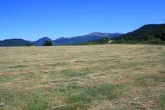 Pyrenean äng i Aude Royaltyfria Foton