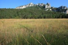 Pyrenean äng i Aude Arkivbild