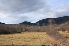Pyrenean äng i Aude Royaltyfri Foto