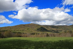 Pyrenean äng i våren, Aude i Frankrike Arkivbilder