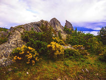Pyrenean rock with broom under clouds Royalty Free Stock Photo