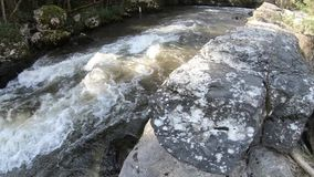 Pyrenean stream in  Aude, France stock footage