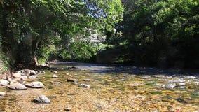 Pyrenean stroom van Aude, Frankrijk stock footage