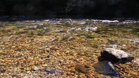 Pyrenean stroom van Aude, Frankrijk stock videobeelden