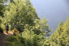 pyrenees Royaltyfri Bild