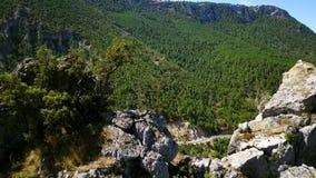 pyrenees archivi video