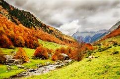 Pyrenees Atlantiques Foto de Stock