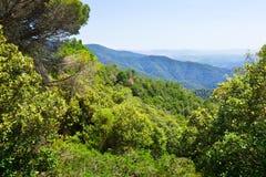 Pyrenees berg från hög poäng Montseny Arkivfoto