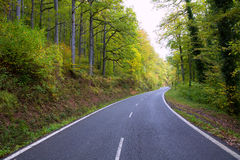 Pyrenees curve road in forest Stock Images