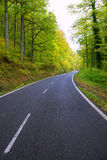 Pyrenees curve road in forest Stock Photos