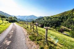 Pyrenees francesi Immagine Stock