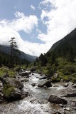Pyrenees mountain river Stock Photos