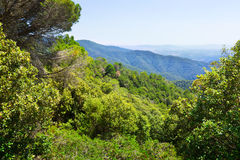 Pyrenees mountains from high point. Montseny Stock Photo