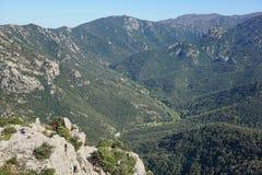 Pyrenees Orientales krajobraz dolinny Lavail Francja zdjęcie stock