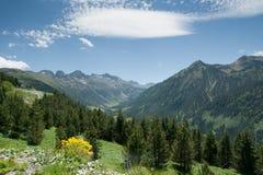 pyrenees spanish wiosna fotografia stock