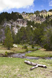 Pyrenees in summer. A landscape with a river in the Pyrenees Royalty Free Stock Photography