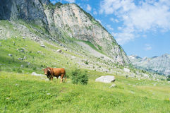 Pyrenees valley Royalty Free Stock Photos