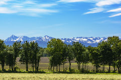 Pyrennees mountains seeing from a field, France Royalty Free Stock Images