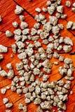 Pyrit - dum guld för ` s - på den wood trädstubben Royaltyfri Fotografi